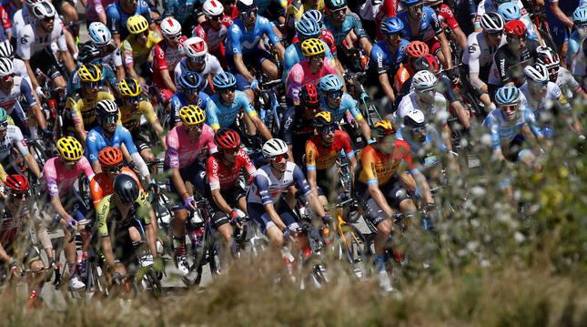 Pelotón ciclista en el Tour